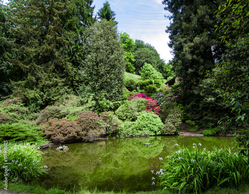 Fotobehang Lente park in spring with a beautiful pond surrounded by trees and flowering plants