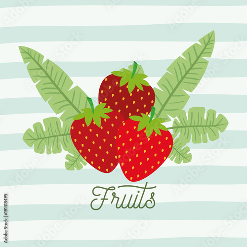 strawberries fruits with leaves on decorative lines color background vector illustration