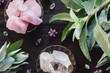 Leinwanddruck Bild - Quartz and Rose Quartz  Crystals and Sage