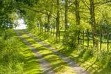 idyllic field path - 191454604