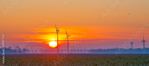 Foto op Plexiglas Ochtendgloren Wind turbines in a field at sunrise in winter