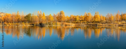 Goldener Herbst am See, Birken in voller Herbstfärbung spiegeln sich