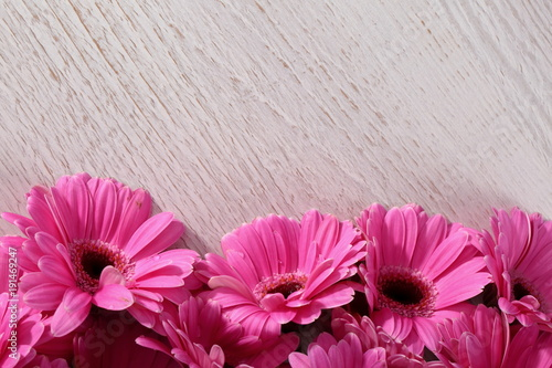 Fotobehang Gerbera Gerbera with a large beautiful inflorescence is a wonderful decoration of any tying or decoration with cut flowers.