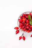 rose hip isolated - 191472484