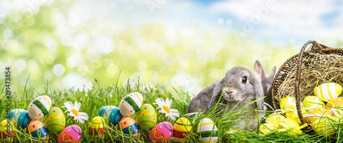 królik z koszem jaj w krajobraz natura