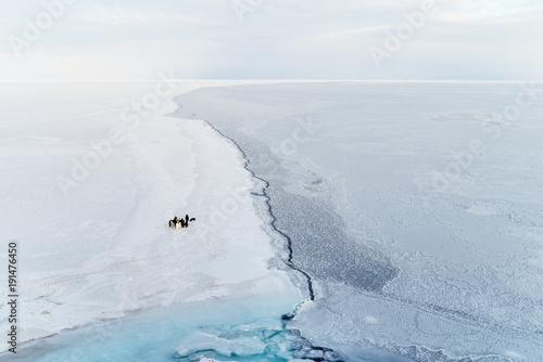 Tuinposter Antarctica Penguins at the edge