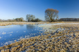 Frosted meadow, frozen pond, trees and clear sky - 191483417