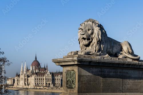 Foto op Canvas Boedapest hungary, budapest, parliament