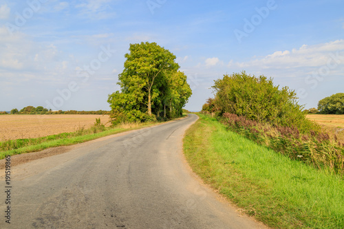 Tuinposter Beige A Country Road