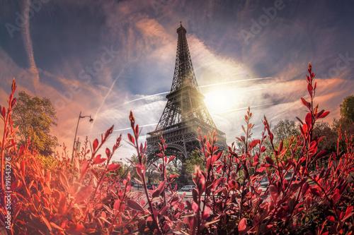 Tuinposter Eiffeltoren Eiffel Tower during spring time in Paris, France