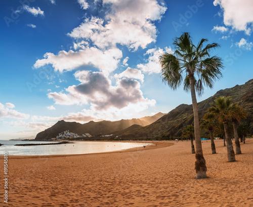 Deurstickers Canarische Eilanden palm trees Playa de las Teresitas Beach, Tenerife