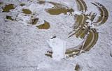Footprints in snow - 191546641