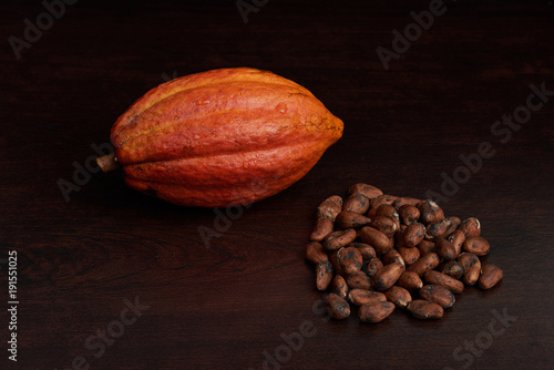 Cocoa pod with dry seeds