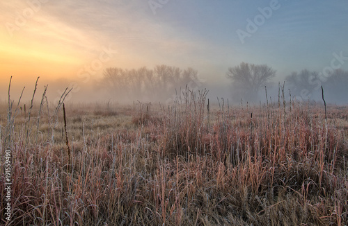 Keuken foto achterwand Cappuccino Foggy sunrise 2
