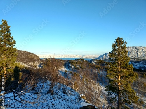 Foto op Canvas Blauw Sunny days in Finnmark Northern Norway indian summer first snow