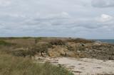 paysage de campagne - 191597612