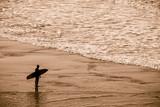 silhouette de surfeur sur la plage - 191604289