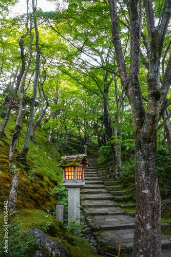 Poster Kyoto Lamp in Jojakko-ji temple, Kyoto, Japan