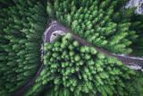 Empty road in a forest from a drone - 191609431