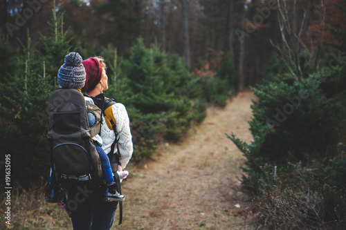 forest, hiking, nature, walking, people, walk