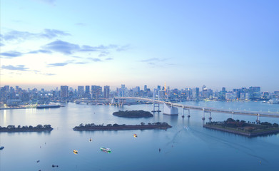 Tokyo city skyline at dusk.