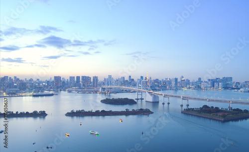 Foto op Plexiglas Tokio Tokyo city skyline at dusk.
