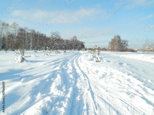 Foto op Plexiglas Pool Ski track in the city park on a sunny winter day