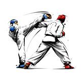 taekwondo action 4