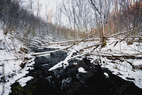Fotobehang Bergrivier Forest stream in winter