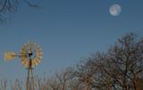 Rural Texas Setting Moon - 191700237
