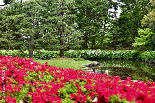 Fotobehang Azalea ツツジ咲く庭園