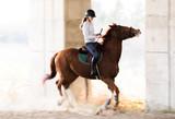 girl riding a horse - 191715221