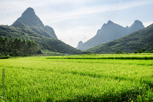 Foto op Canvas Lime groen Beautiful landscape at Yangshuo County of Guilin, China