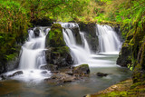 Beautiful cascades of Clare Glens in Ireland - 191725619