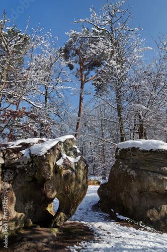 Aluminium Grijze traf. rocher de de l'éléphant sous la neige en forêt de Fontainebleau