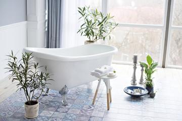 Spa and wellness treatments. Luxurious bathroom in the loft. Health and leisure. © farmuty