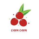 Doodle, hand drawn camu camu fruit, trendy superfood isolated on white background.  - 191730262