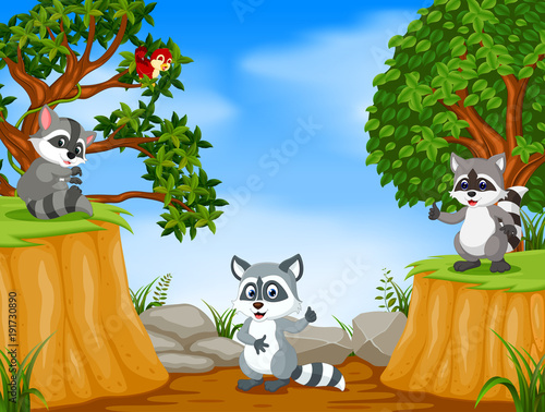 Fotobehang Zoo Raccoons with mountain cliff scene