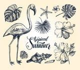 Summer set. Ink hand drawn collection of tropical plants leaves, flowers, seashells, flamingo bird. Botanical, tropical elements for design with brush calligraphy style lettering, Vector illustration. - 191732611