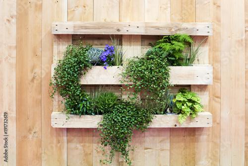 Foto Murales Garten, Wandgarten, Palette, Holz