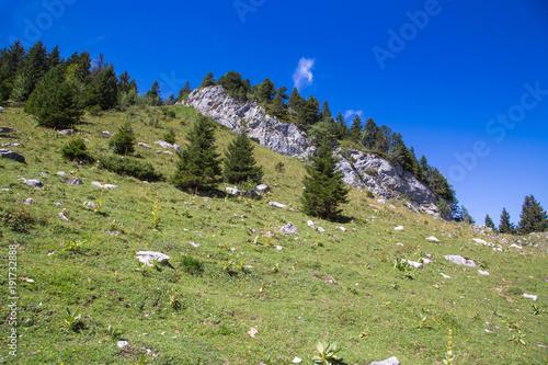 Foto op Canvas Pistache Montagne - Le Parmelan