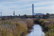 natural reserve in Rainham Marshes near river Thames with factory chimney