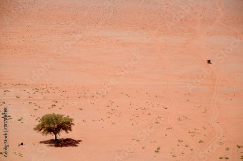 Désert du Wadi Rum Poster