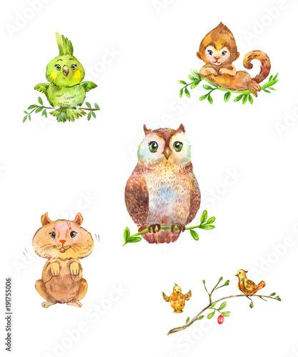 Fotobehang Uilen cartoon Cute forest animals and birds