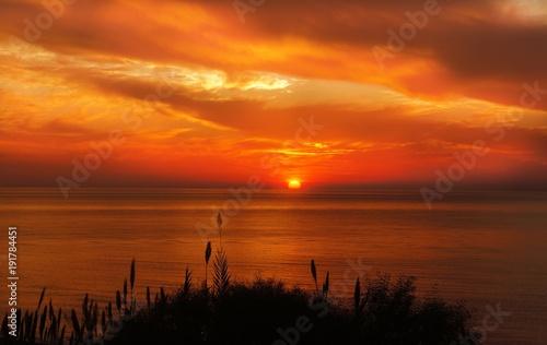 Foto op Aluminium Oranje eclat Hays Silhouette Near Ocean during Sunset