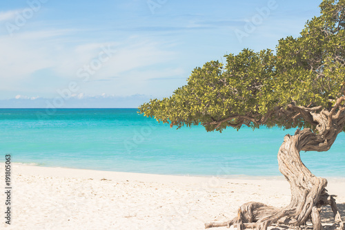 Foto op Canvas Tropical strand Wellen am Eagle Beach