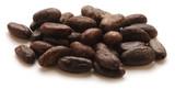 Theobroma cacao Կակաո 카카오 Kakó شجرة Kakaó Kakaowiec właściwy növényfaj كاكاو - 191806865