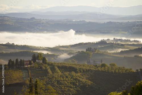 A foggy September morning in the vicinity of San Gimignano.Toscana, Italy