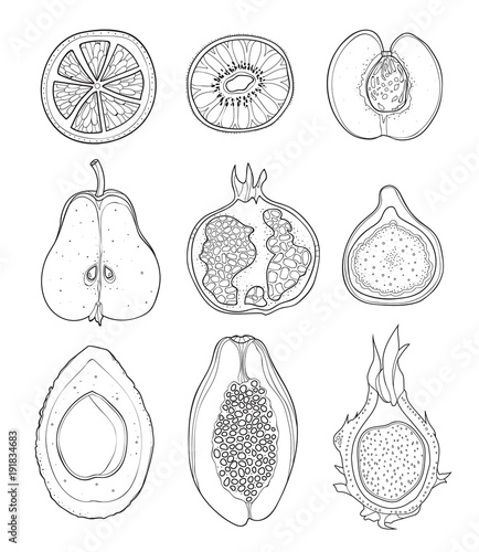 Collection of cartoon fruits. Illustrations in doodle style. Set of fruit with black outline on white background. - 191834683