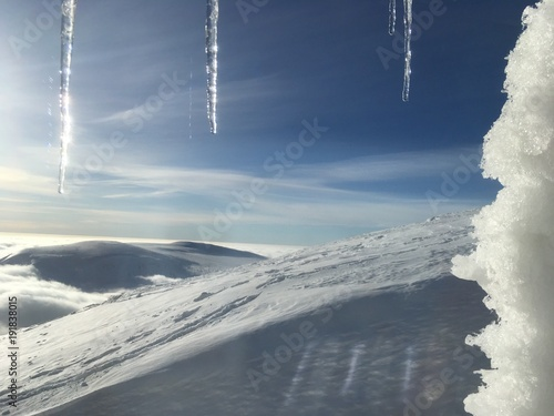 winter landscape with icicles